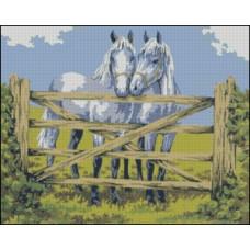 NG262 Zaljubljeni konji 1:1 (35x28cm)