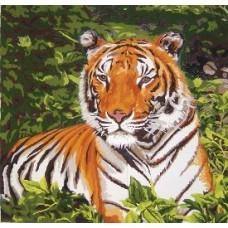 NG299 Tigar 1:1 (30x29cm)